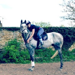 How to find a good riding instructor