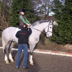Posture Management in the Saddle