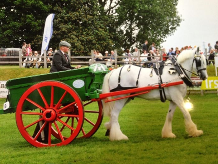 William Sonnex winning at the Newark and Notts Show