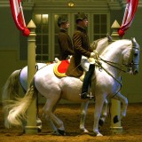Classical Riding – what's it all about?