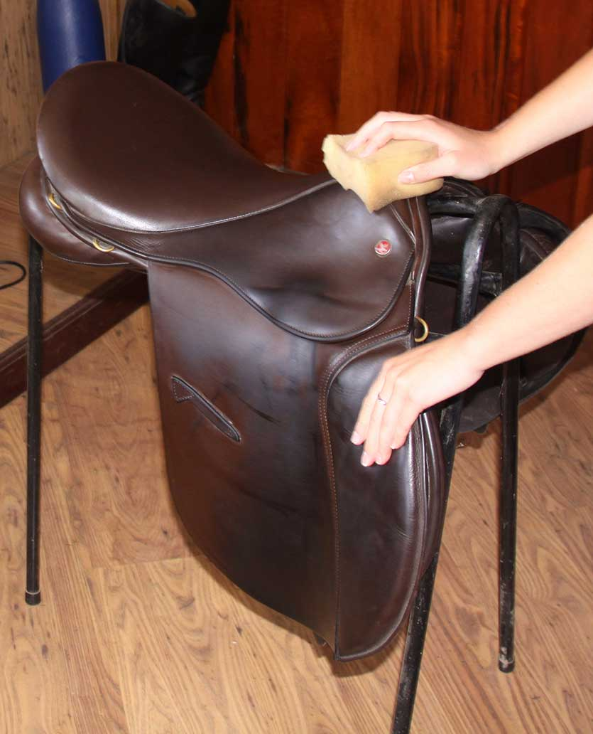 A well used saddle