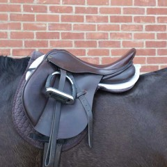 Ill-fitting saddles are culprits for horse and rider back pain concludes new study