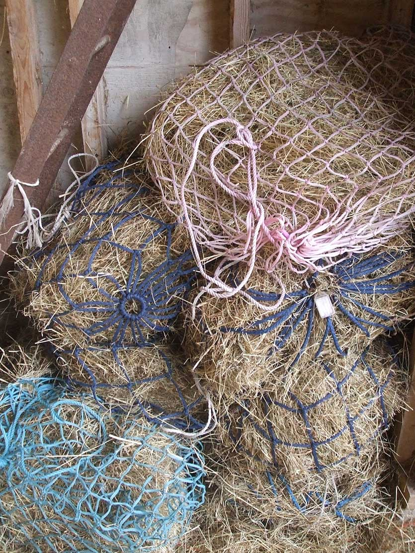 These large holed haynets are not as efficient at extended foraging times as small holed versions.