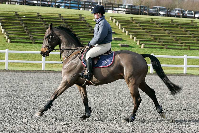 Forty three per cent of saddles are estimated to be ill-fitting. Is yours?