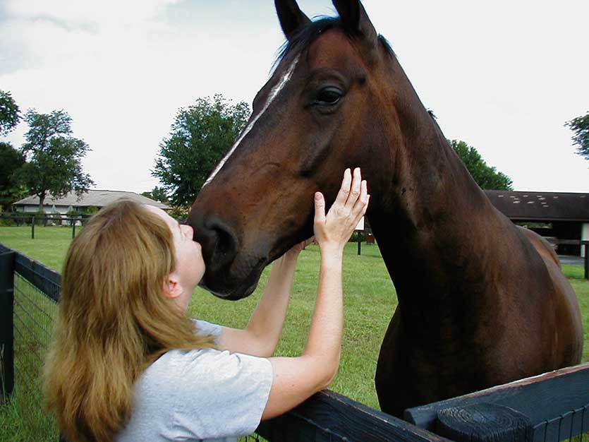 A study has demonstrated the therapeutic effects of being with horses