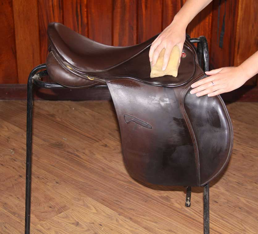 Cleaning-a-saddle