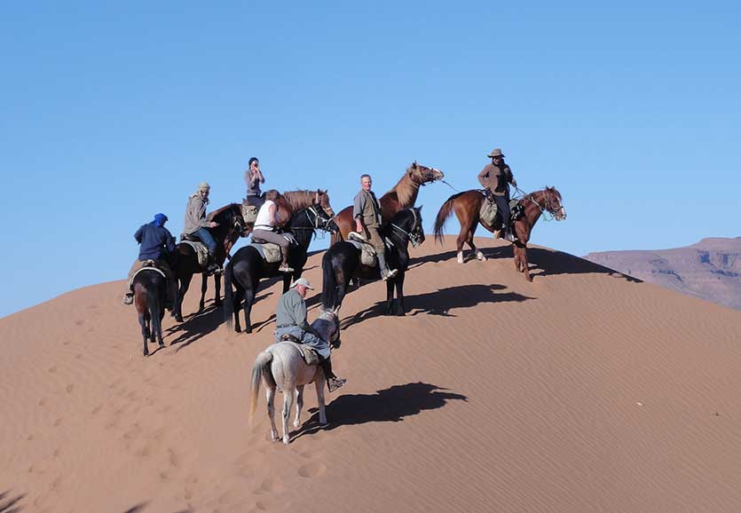 in-the-saddle-morocco