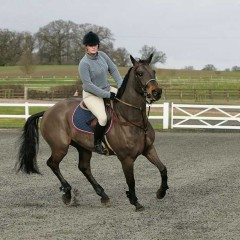 Canter is key