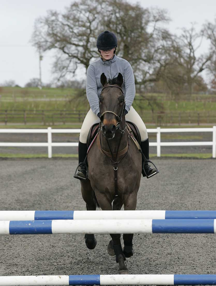 Lungeing over fences should boost the horse's jumping confidence, ultimately improving your ridden performance.