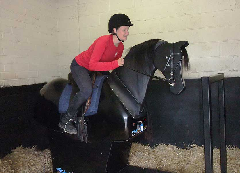A lesson on a mechanical horse would be an ideal way to assess your mobility.